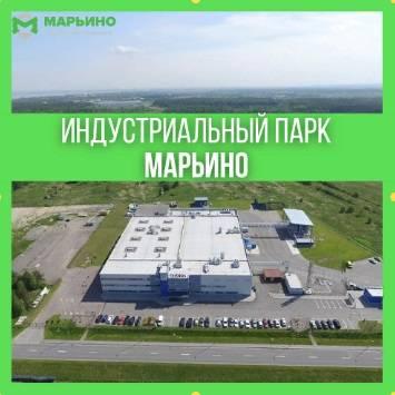 объявления Яндекс Директ